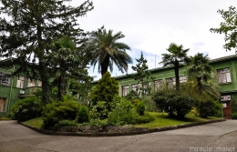 "Sanatorio ""Green Grove"""